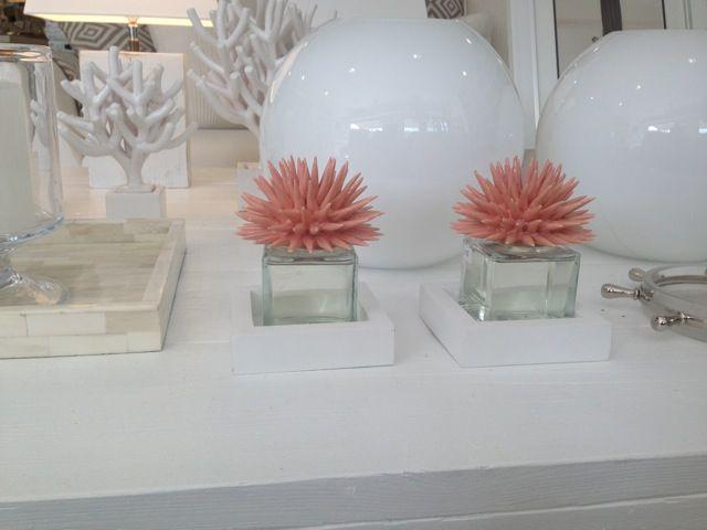 Stunning Riccio Caprese Prezzo Ideas - Home Design Inspiration ...