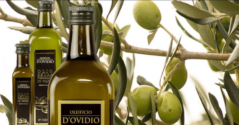 Oleificio D'Ovidio Occasione produzione olio extravergine estratto a freddo made Italy Abruzzo