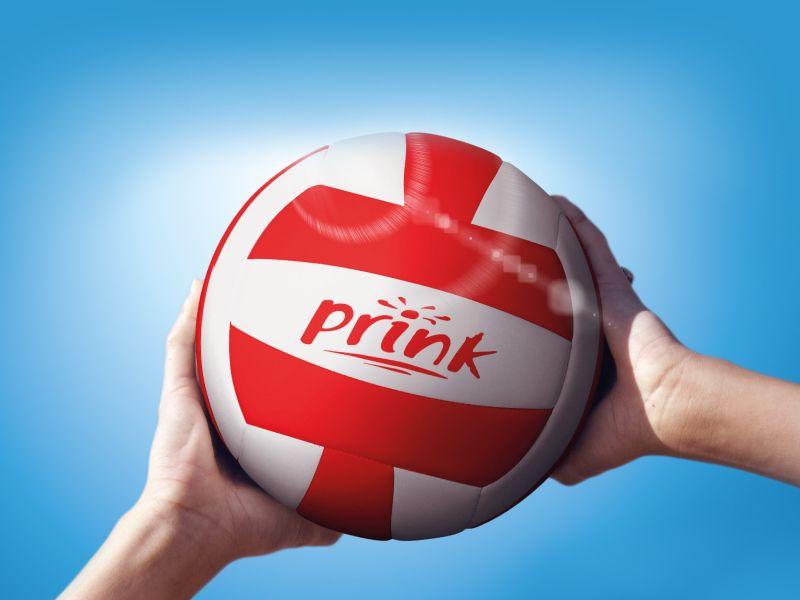 Offerta vendita cartucce Prink - Promozione distribuzione cartucce Prink professionali