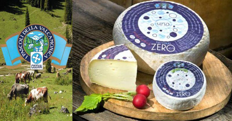 offerta vendita formaggio senza lattosio - occasione formaggi tipici italiani ZERO lattosio