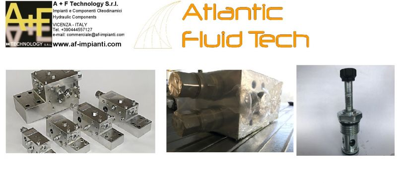 OFFERTA EXCAVATORS VALVE ATLANTIC FLUID TECH BD000083