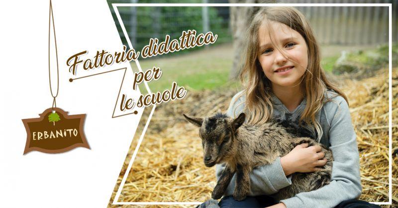Offerta fattoria didattica per bambini - fattoria per ragazzi progetto scuole Erbanito