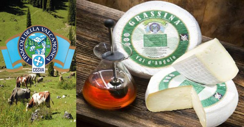 offerta formaggio tipico GRASSINA VAL DANGOLO - occasione produzione formaggi tipici italiani