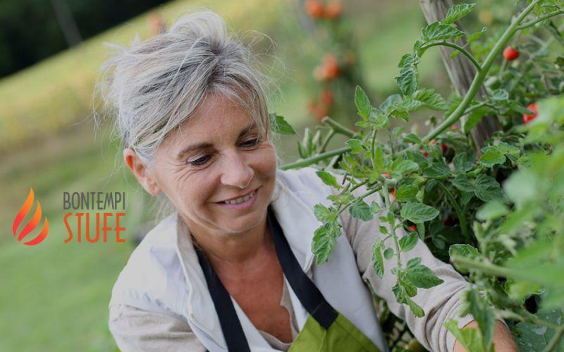 AZIENDA BONTEMPI BRUNO offerta concime piante – promozione rivenditore cifo giardino
