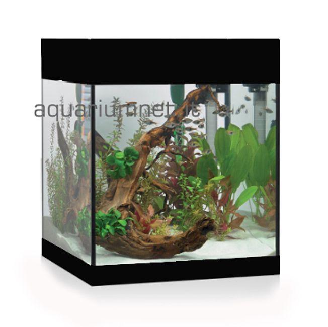 Acquario Askoll Pure M